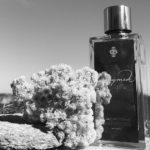 The Fragrance Foundation appreciates the Ganymede perfume of Marc-Antoine Barrois and shows it to us!